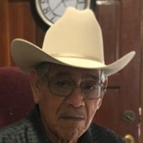 Pedro L. Carmona