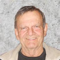 Roy McDonald