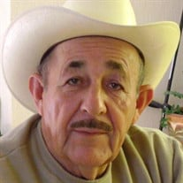 Mr. Carmelo Ornelas