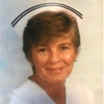Mary Diane (Orr) Cook
