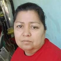 Hilda Idalia Copal