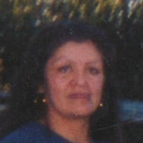 Sheri Ann Nelson