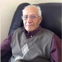 Mr. Manishanker Trivedi