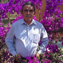 Jose Nunez Molina