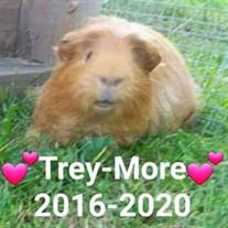 Trey-More Darling