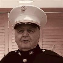 Robert Harold Hanevik