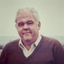 Richard Peter Hamlin