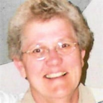 Ann M. Sullivan