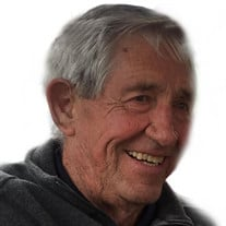 John Elmer Owen