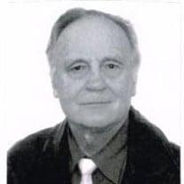 Elmar Arnold Gelzins