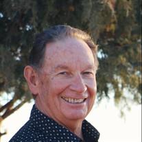 Ronald P Singer