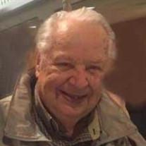 Bruno Manfred Sommer