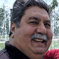 Mohammad Zaher Alimi