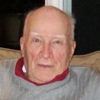 Leo G. Brinkman