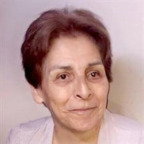 Yolanda Lomas