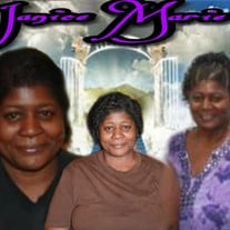 "Mrs. Janice Marie ""Jenaree"" Johnson"