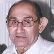 Julius John Pellegrin