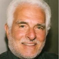 David I. Chesler