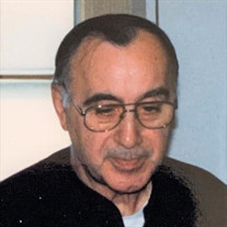 Phillip J. D'Amico Jr.