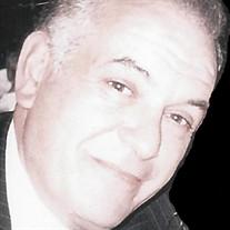 Michael D. Schiano
