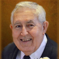 Douglas E. Mistich