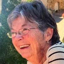 Mrs. Patricia J. Steele