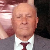 Bernardo D'Agostini