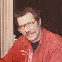 Michael Louis MEDVIK