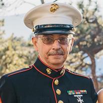 Mr. Michael A. Brisson