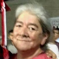 Elva Nelly Ibarra