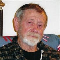 Mr. Leonard Edward Lewins