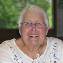 Susan J. Lambrix