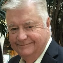 Mr. John B. Dioguardi Jr