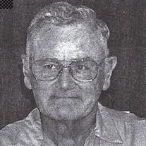 Mr. David E. Witt