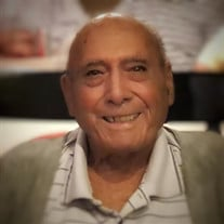 Peter E Altieri