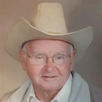 David N. Henke