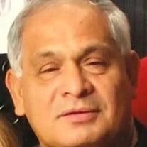 Alfredo Garcia Jr.