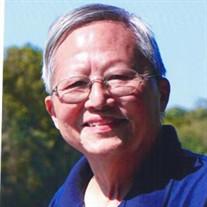 Dao Qin