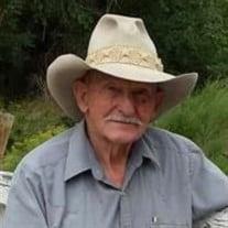 Lee A. Nicholes