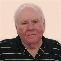 Stephen R Stringer