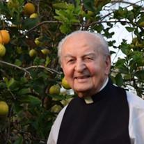 Rev. Fr. John D. Protopapas
