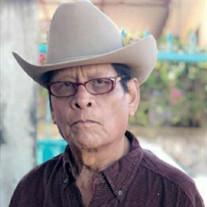 Pedro Ortega Beltran