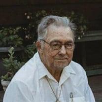 Leroy J. Meinders