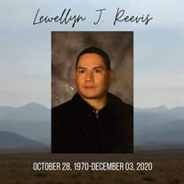 Lewellyn Joseph Reevis Jr