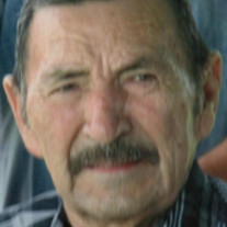Ramiro N. Garza