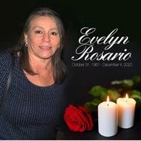 Evelyn Rosario