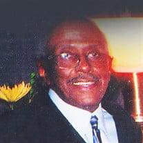 Mr. Morton Davis Jr.