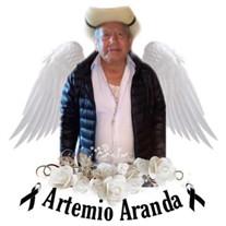 Artemio Aranda Calderon