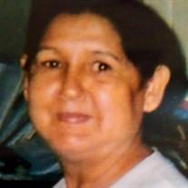Minerva R. Hernandez