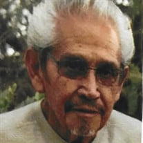 Louis Alfonso Maes